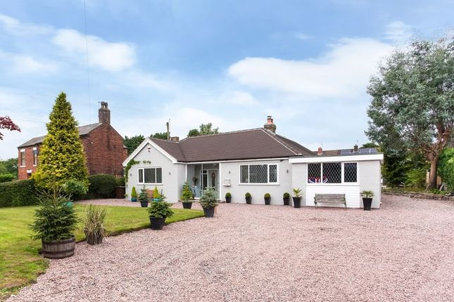 Thumbnail Detached bungalow for sale in Park Lane, Knypersley, Staffordshire