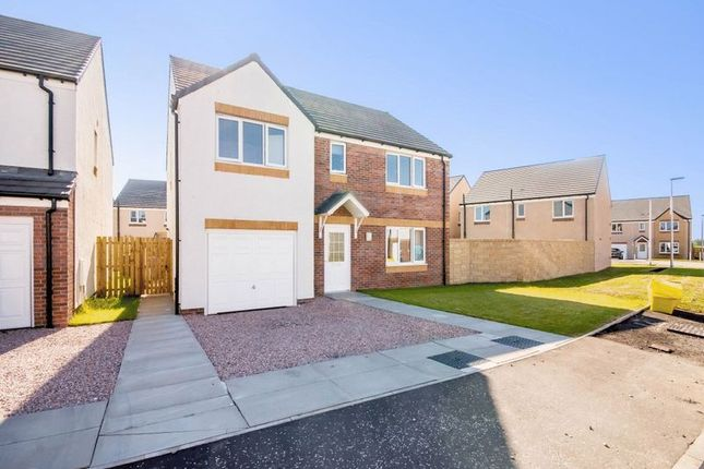 Thumbnail Detached house for sale in Hawk Street, Dunfermline