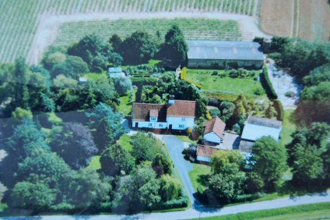 Thumbnail Farmhouse for sale in Morley Road, Deopham, Wymondham
