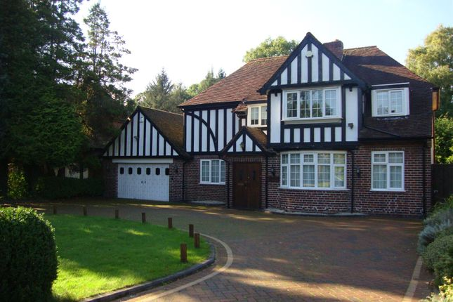 Thumbnail Detached house to rent in Lady Byron Lane, Knowle