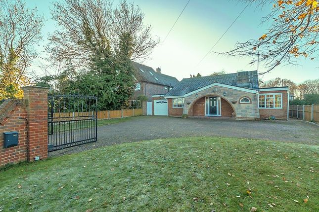 Thumbnail Detached bungalow to rent in Stockers Hill Road, Rodmersham, Sittingbourne