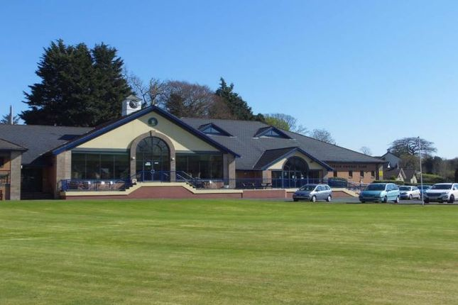 Thumbnail Leisure/hospitality to let in 2B Strangford Road, Downpatrick