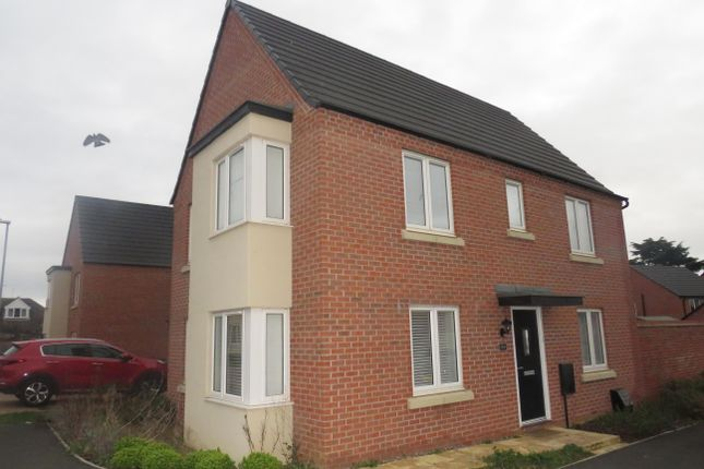 Thumbnail Detached house to rent in Balmoral Close, Northampton