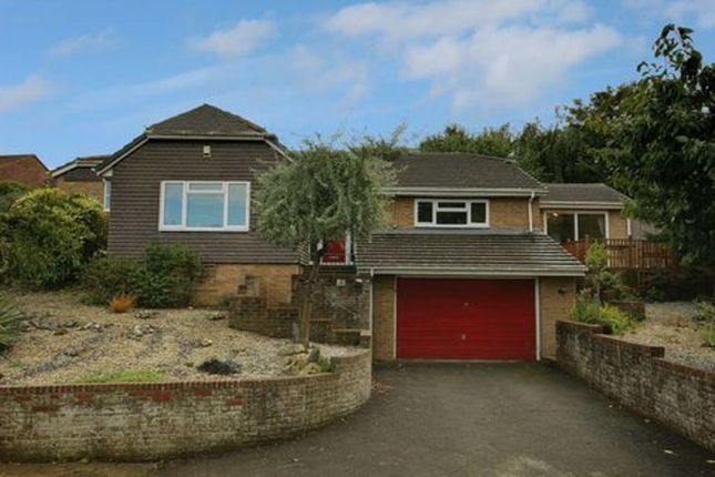 Thumbnail Detached house to rent in Earls Close, Seaford