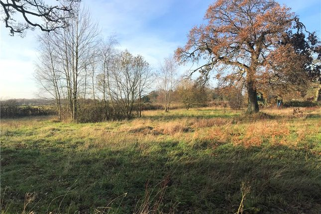 Picture No. 04 of Land At Woodlands, Verwood Road, Woodlands, Wimborne, Dorset BH21