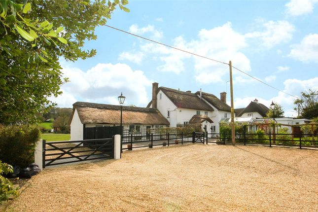 Thumbnail Detached house for sale in Ringwood Road, North Gorley, Fordingbridge, Hampshire