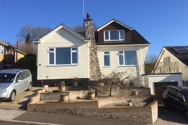 Thumbnail Detached house for sale in Dolphin Court Road, Preston, Paignton