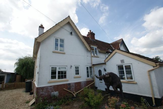Thumbnail Cottage to rent in Cullompton