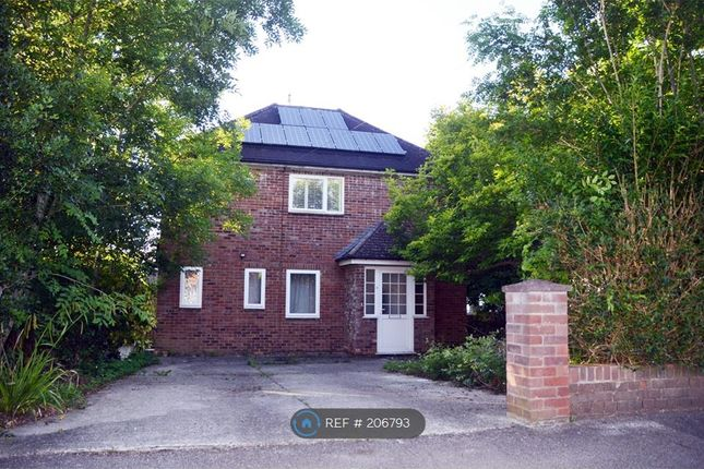Thumbnail Semi-detached house to rent in Orchard Road, South Croydon