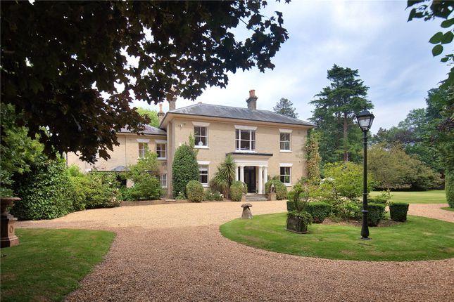 Thumbnail Property for sale in Marl Lane, Fordingbridge, Hampshire