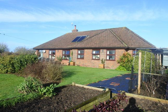 Thumbnail Detached bungalow for sale in College Arms Close, Stour Row, Shaftesbury