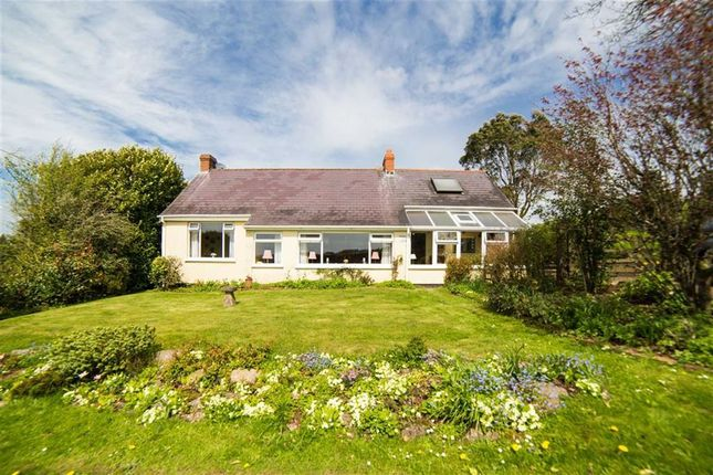 Thumbnail Bungalow for sale in Devauden, Chepstow, Monmouthshire