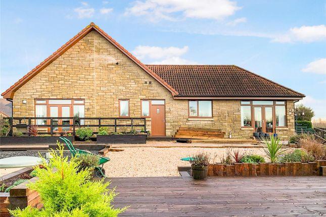 Thumbnail Detached bungalow for sale in Avonbridge, Falkirk