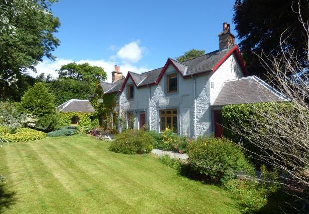 Thumbnail Detached house for sale in Todhillwood Cottage, Canonbie, Dumfries And Galloway