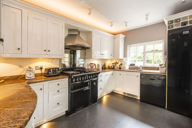 Semi-detached house to rent in Richmond Road, Twickenham