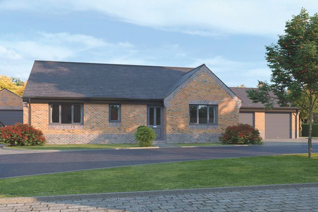 Thumbnail Detached bungalow for sale in The Claydon, St Mary's Walk, Newbold