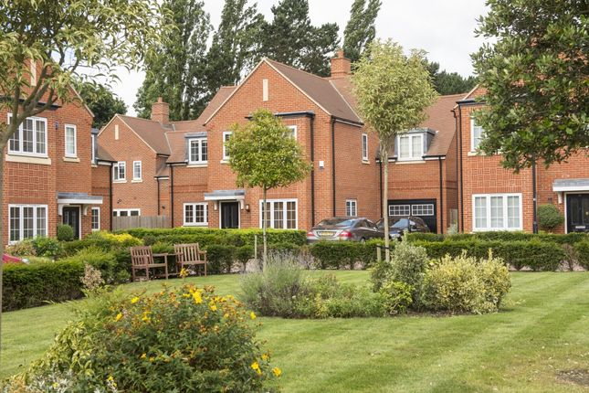 Thumbnail Detached house to rent in Tiberius Square, Kings Park, St. Albans