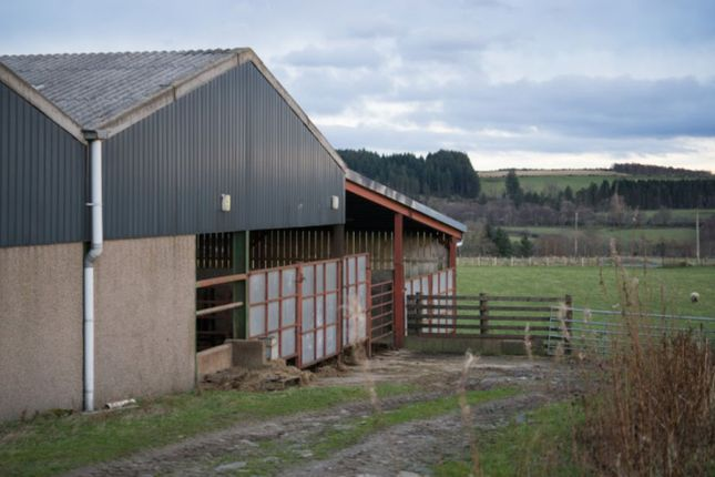 Property For Sale Near Huntly