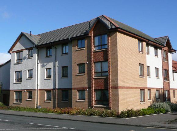 Thumbnail Flat to rent in Johnston Court, Falkirk