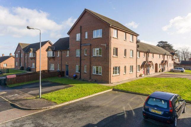 Thumbnail Flat for sale in Glenmount Courtyard, Newtownabbey
