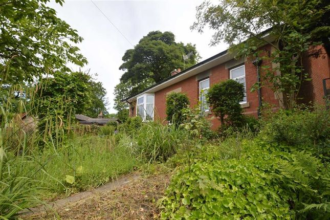 Thumbnail Detached bungalow to rent in Manchester Road, Baxenden, Accrington