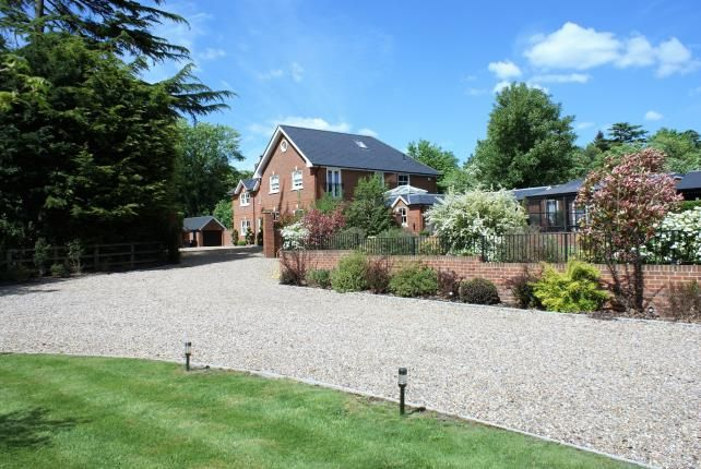 Thumbnail Equestrian property for sale in Chobham, Woking, Surrey