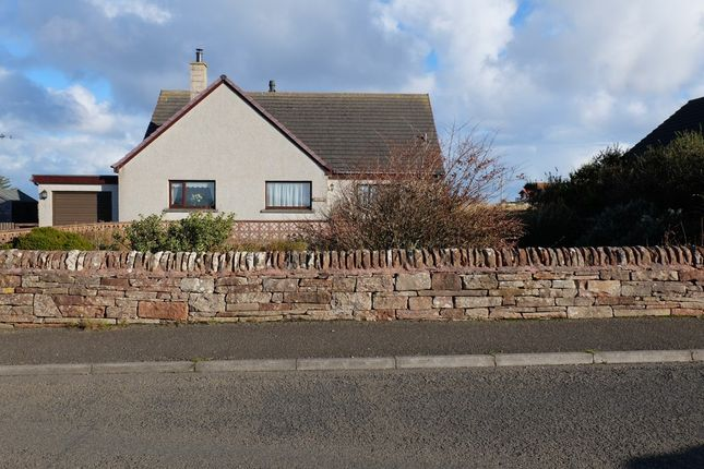 Thumbnail Detached house for sale in Canisbay, Wick