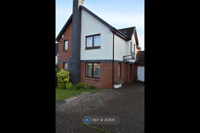 Thumbnail Detached house to rent in Waterside Avenue, Newton Mearns, Glasgow