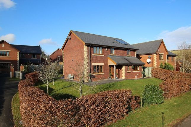 Thumbnail Detached house for sale in Griffin Meadows, Felinfach, Brecon