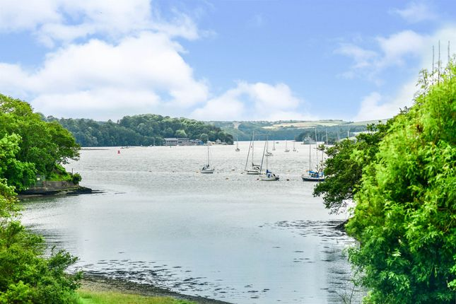 Thumbnail Flat for sale in Wolseley Road, Plymouth