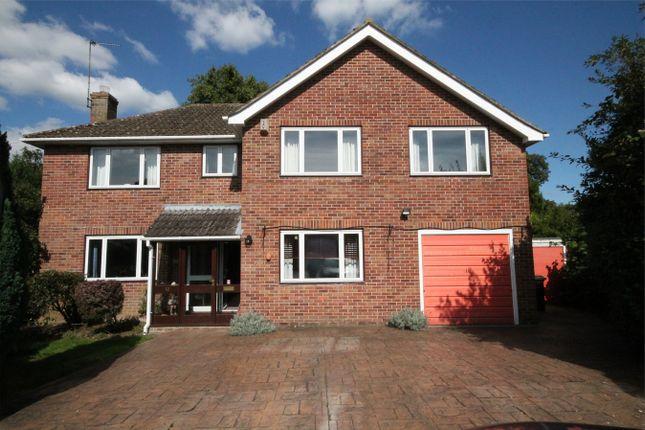 Thumbnail Detached house for sale in Elmfield Gardens, Speen Lane, Newbury