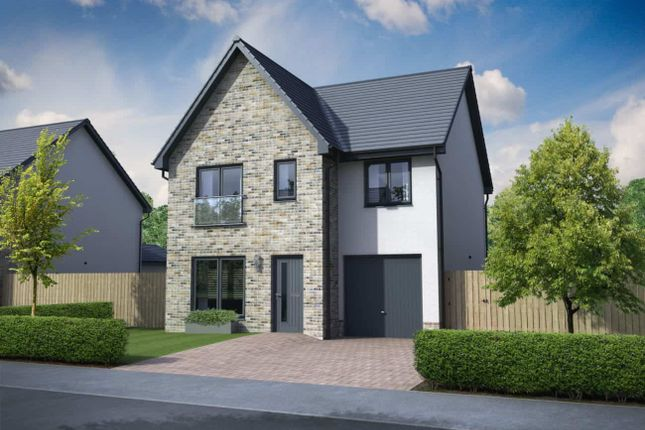 """Thumbnail Detached house for sale in """"Clemente Garden Room"""" at Church Place, Winchburgh, Broxburn"""