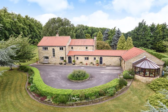 Thumbnail Detached house for sale in Meadow Lane, Snape, Bedale