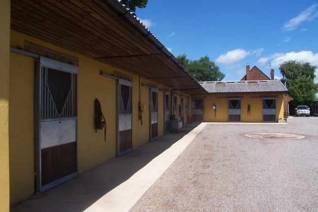 Thumbnail Equestrian property to rent in Broad Hinton, Swindon