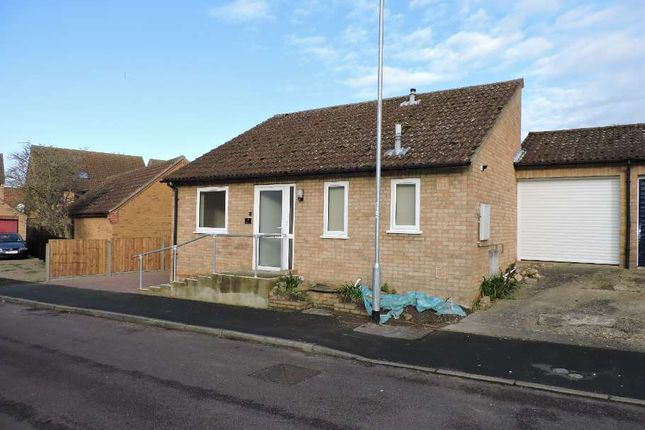 Thumbnail Bungalow to rent in Aves Close, Ely