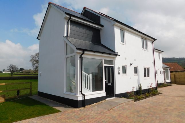 Thumbnail Detached house to rent in Whitford Road, Musbury, Axminster