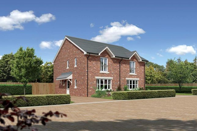 "Thumbnail Semi-detached house for sale in ""Belvoir"" at Cherrytree Gardens, Bishopton"
