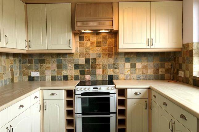 Thumbnail Flat to rent in Wynford Road, Exeter