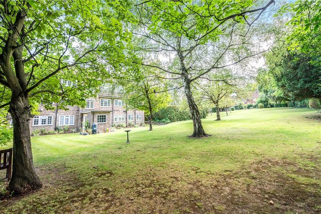 Communal Garden of Downs Lodge Court, Church Street, Epsom KT17