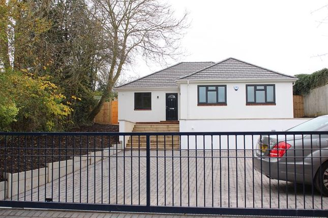 Thumbnail Bungalow for sale in Penrose Close, Lytchett Matravers, Poole