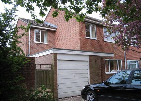 Thumbnail Semi-detached house to rent in Lower Fairmead Road, Yeovil