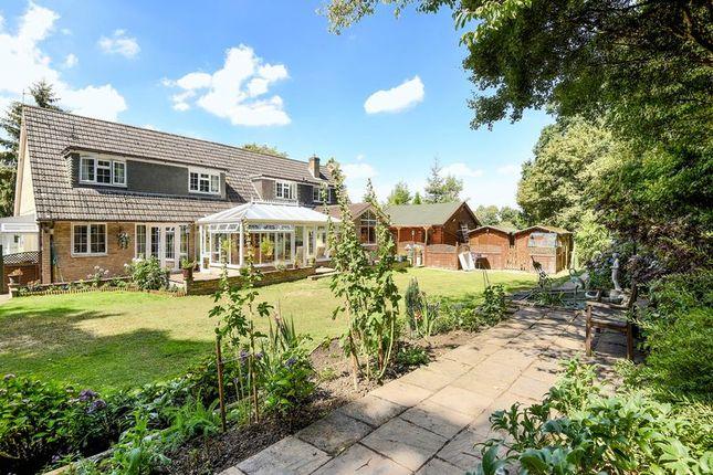 Thumbnail Detached house for sale in Aldermaston Road, Monk Sherborne, Tadley