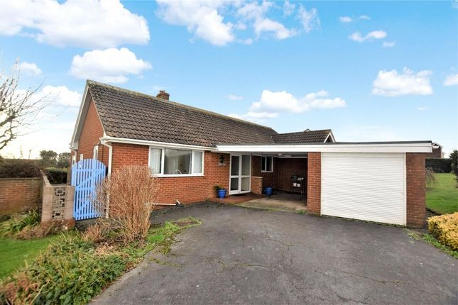 Thumbnail Detached bungalow for sale in Foxholes Hill, Exmouth, Devon