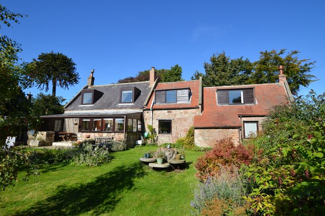 Thumbnail Detached house for sale in Middle Ord, Berwick Upon Tweed, Northumberland