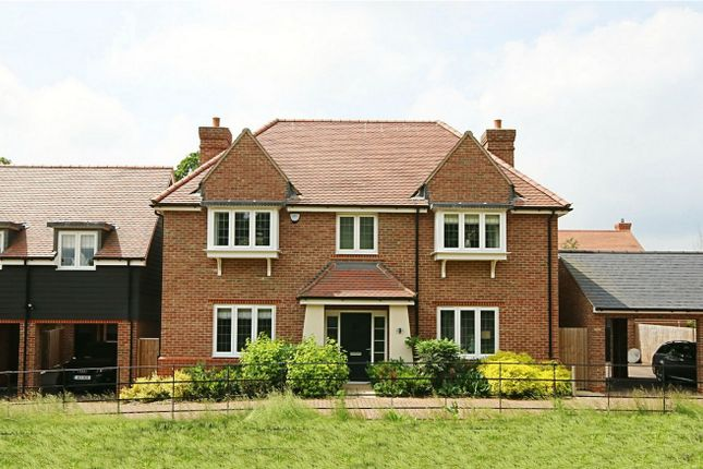 Thumbnail Detached house for sale in Bowlby Hill, Gilston, Hertfordshire