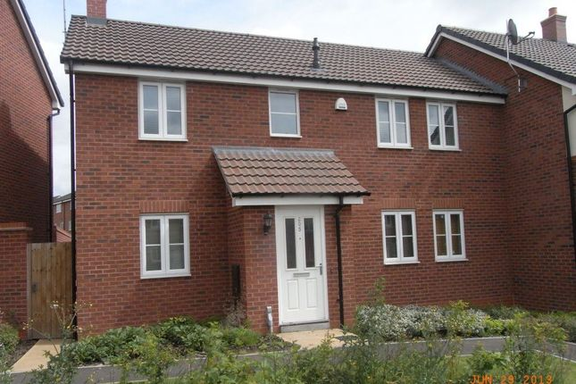 Thumbnail Property to rent in Terry Road, Stoke