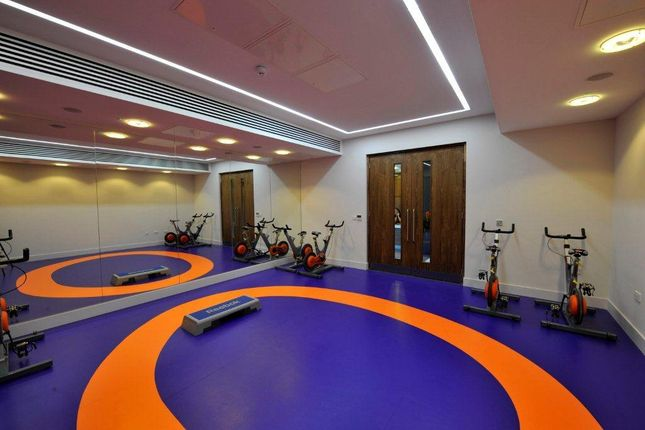 Gym - Workout Room