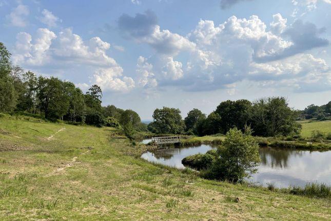 Thumbnail Land for sale in Peaslake Road, Ewhurst, Cranleigh