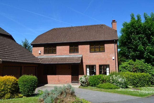 Thumbnail Detached house to rent in Beechwood Park, Felden, Hemel Hempstead