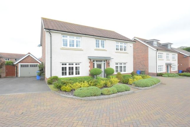 Thumbnail Detached house to rent in Blackcap Lane, Bracknell